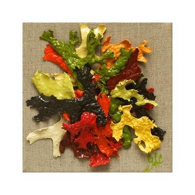 L'autumne Inspiration 2 --  Geraldine Le Calvez