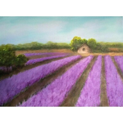 Lavender Field in Provence -- Hilda Bordianu