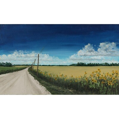 Saline Country Road -- John Cannon