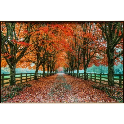Autumn Country Road -- Rob Tilley