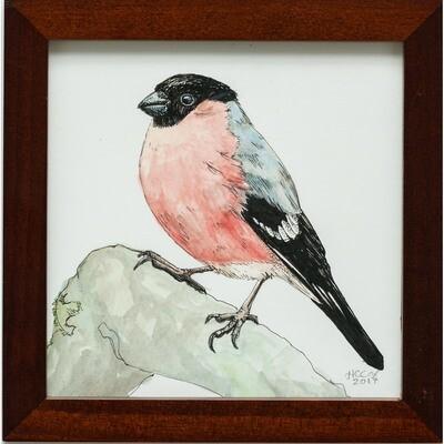 Bader, Cheyenne -- Bullfinch
