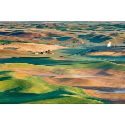 Palouse Spring -- Rob Tilley