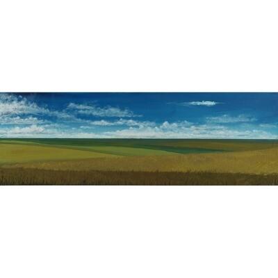Tall Grass Prairie -- John Cannon