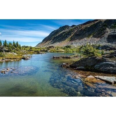 Swimmers Lake -- Larey McDaniel
