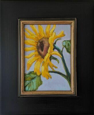 Sunflower III -- Corina Linden