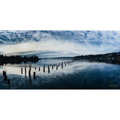 Juanita Bay Cloudscape -- Larey McDaniel