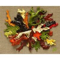 L'automne Inspiration 5 --  Geraldine Le Calvez