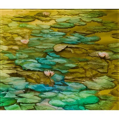 Lilly Pads -- Jean Burnett