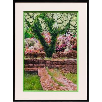 Garden Path -- Jean Burnett