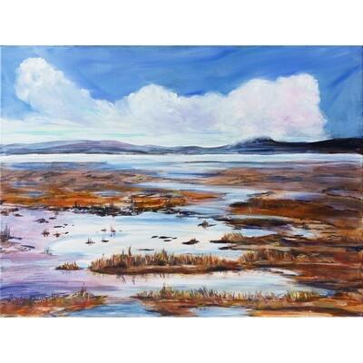 Skagit Delta Flats -- Joan Frey