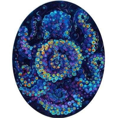 Circular Octopus -- Heidi Barnett