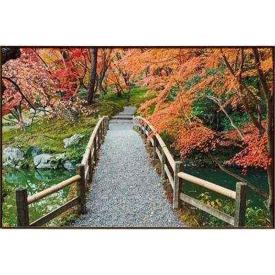 Sento Imperial Palace Garden I -- Rob Tilley