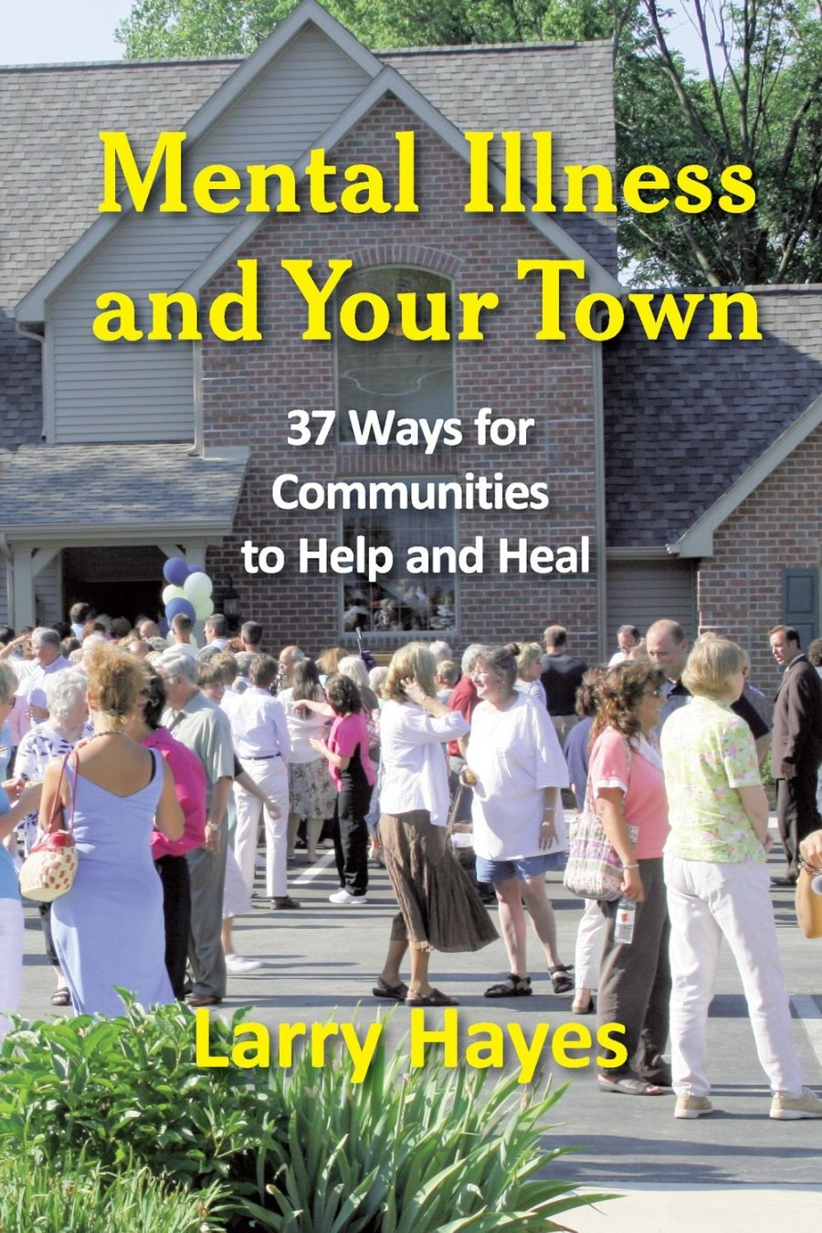 Mental Illness and Your Town