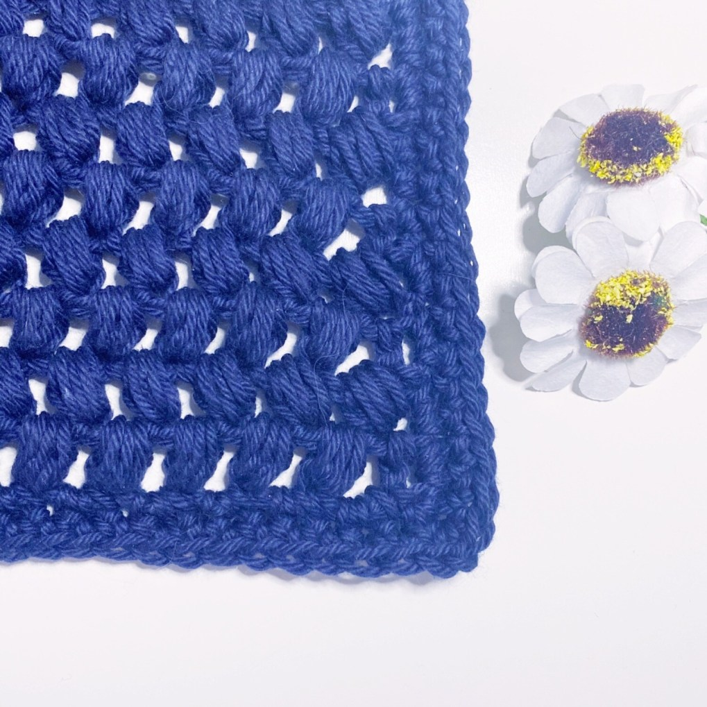 Washcloth Series - 04 Blueberry