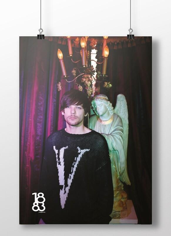 Louis Tomlinson poster 9