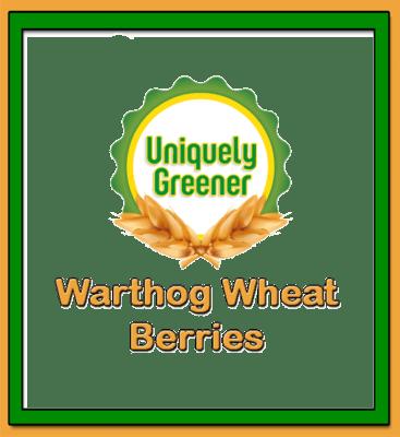 Organic Warthog Wheat Berries