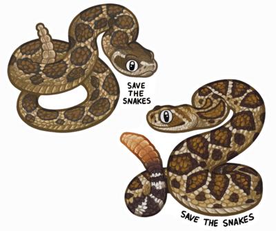 Rattlesnake Sticker Pack