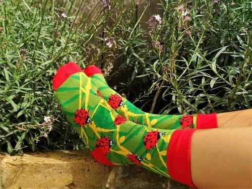 Lucky ladybird socks