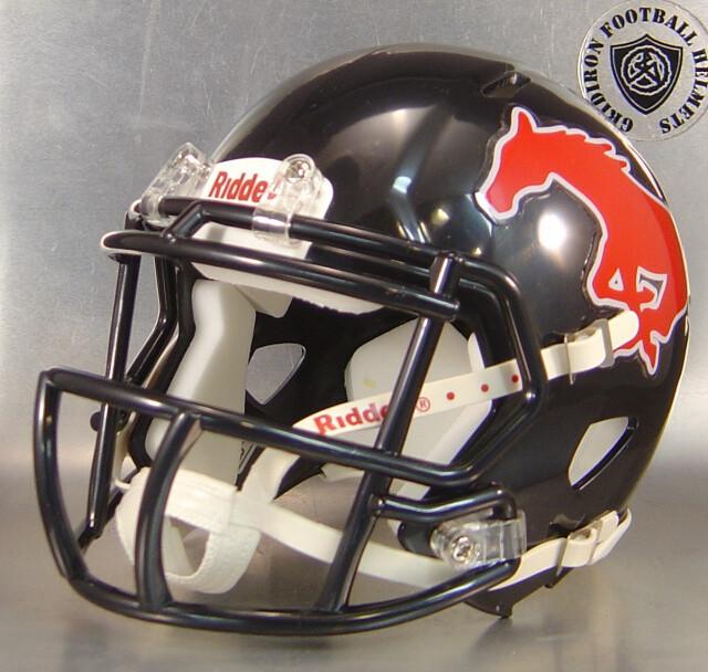 Spring Westfield Mustangs 2017 (TX) - mini-helmet