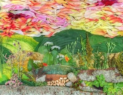 Petal Pointillism # 4