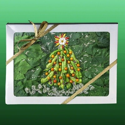 Greeting Cards: Holiday Star with Pepper Tree 