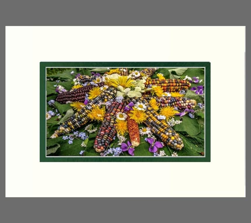 Wildflower Burdock Sun Sideways   Matted 5