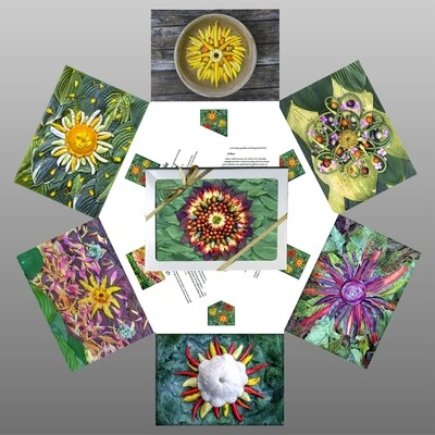 Celestial Vegetable Greeting Cards Sunday Morning Collection