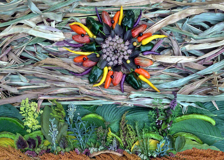 Setting Sun of the Harvest Equinox