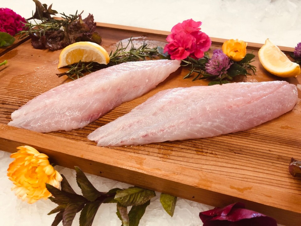 Wild Pacific Rockfish Fillets (10 portions)