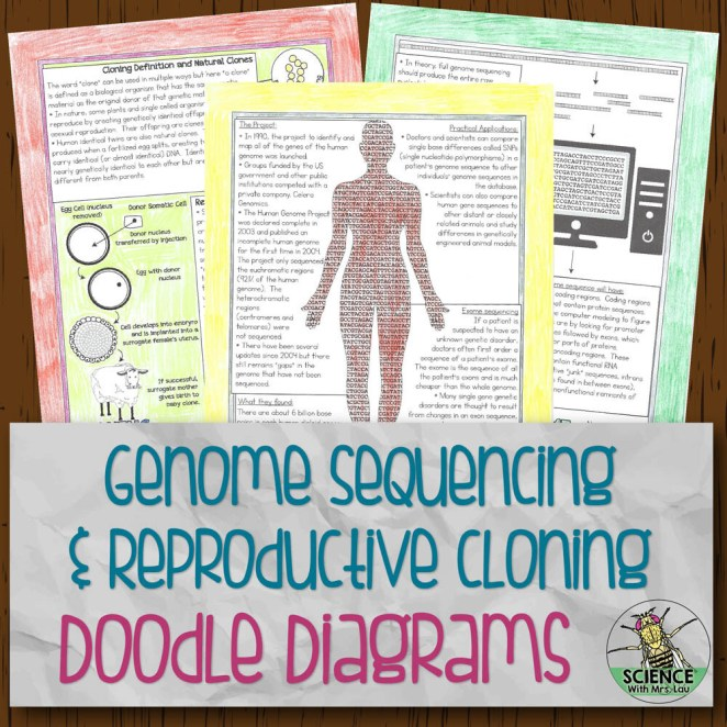 Genome Sequencing and Cloning Doodle Diagram Notes