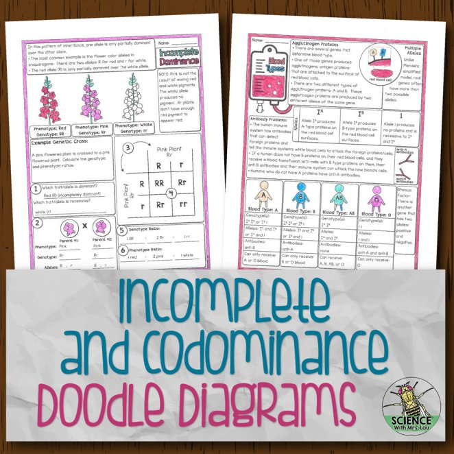 Incomplete and Codominance Doodle Diagrams