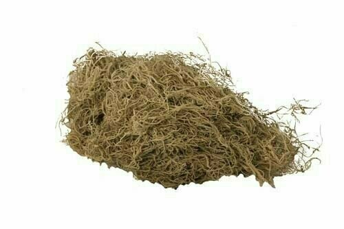 7003 - 4 lb Bulk Natural Spanish Moss ( Not Preserved)