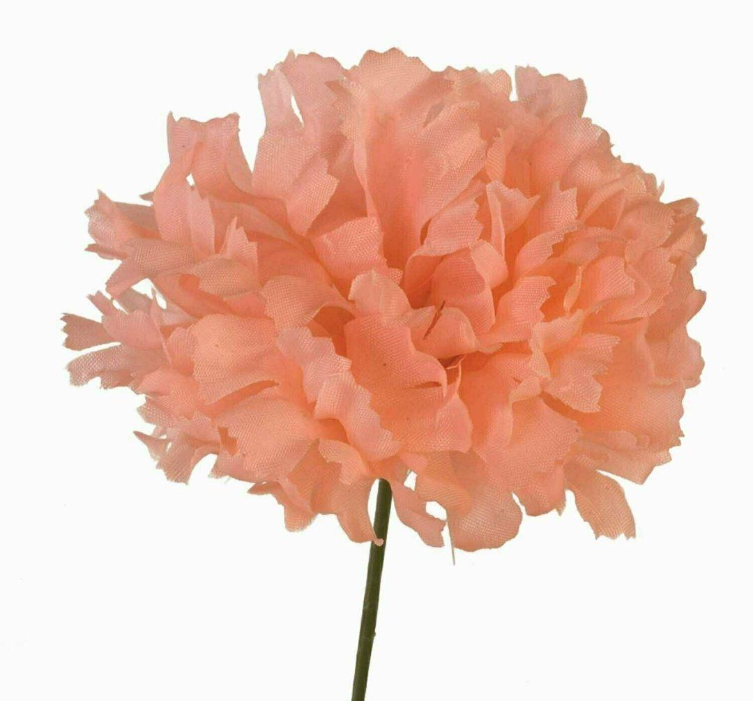 S3000PEACH - Carnation Pick $18.75 ( Box 100)