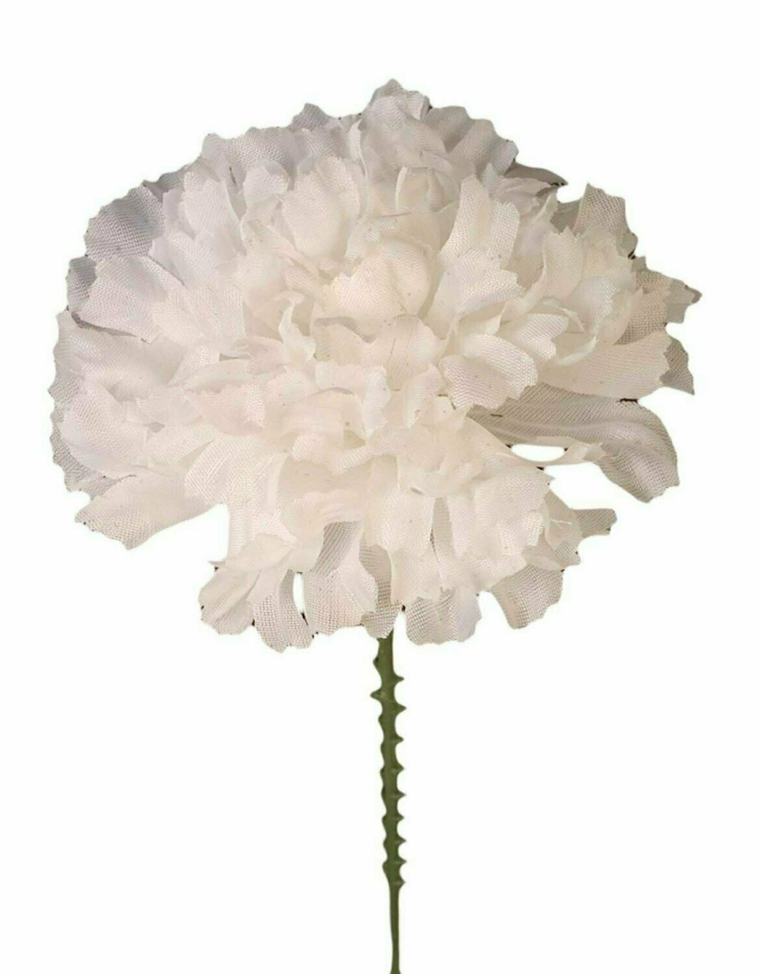 S3000WHT - Carnation Pick $18.75 ( Box 100)