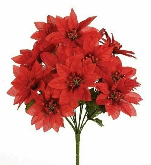 SBX04101RED - Poinsettia Bush x14