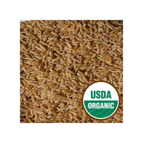 Red Winter Wheat Berry