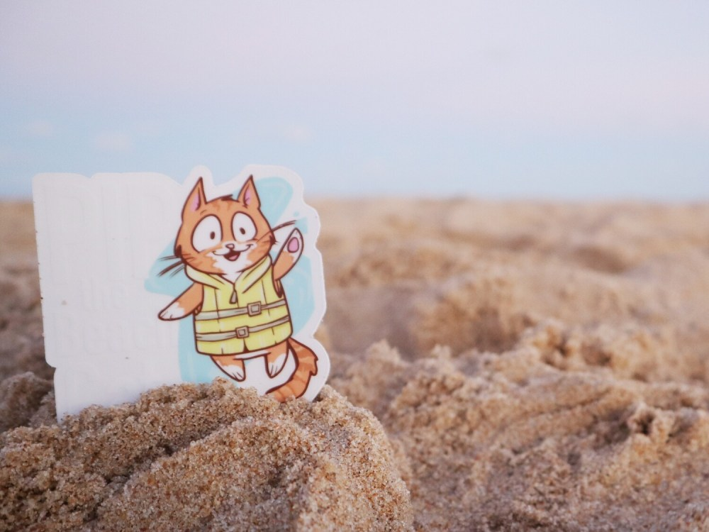 Clear Background Pip the Beach Cat Sticker