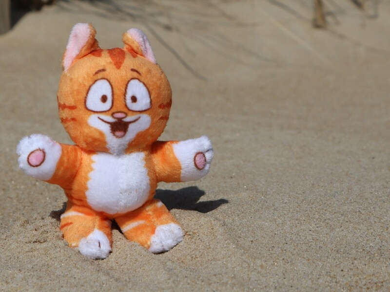 Cartoon Pip the Beach Cat