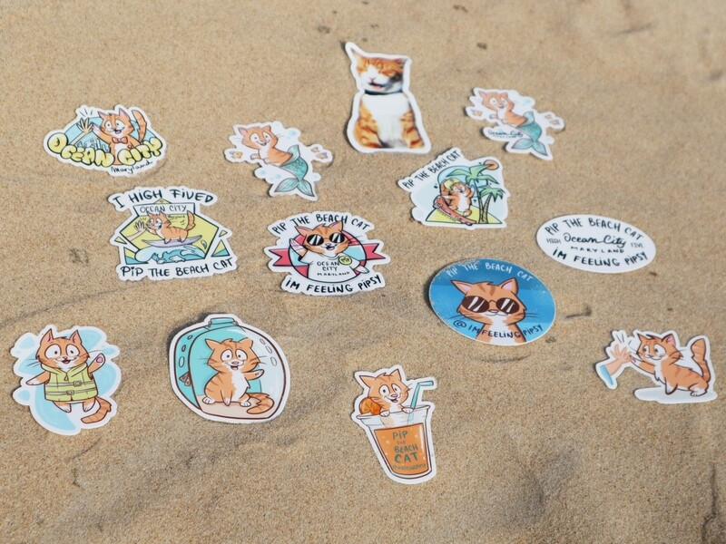 Pip the Beach Cat  Premium Vinyl Stickers
