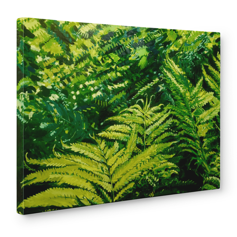 Ferns | Print on Canvas