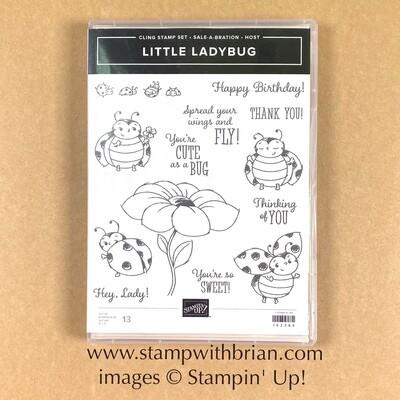 Little Ladybug Cling Stamp Set - NEW
