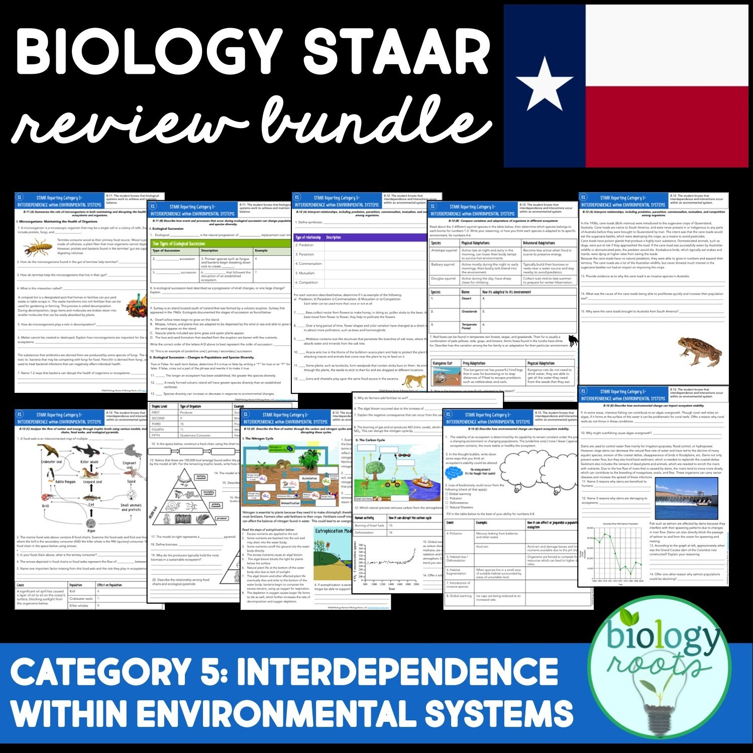 STAAR Biology Review Reporting Category 5