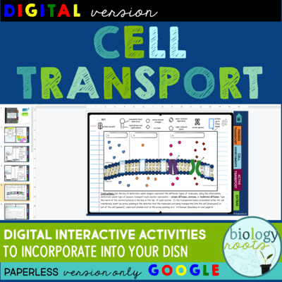 Cell Transport Digital Interactive Activities