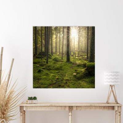 50x50 cm print på fotopapir