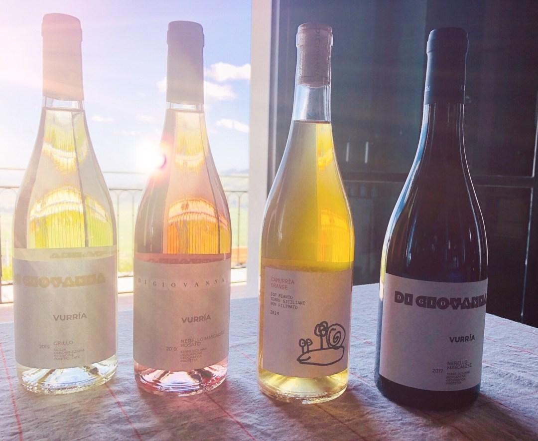 Wine Rainbow - 4 bottiglie