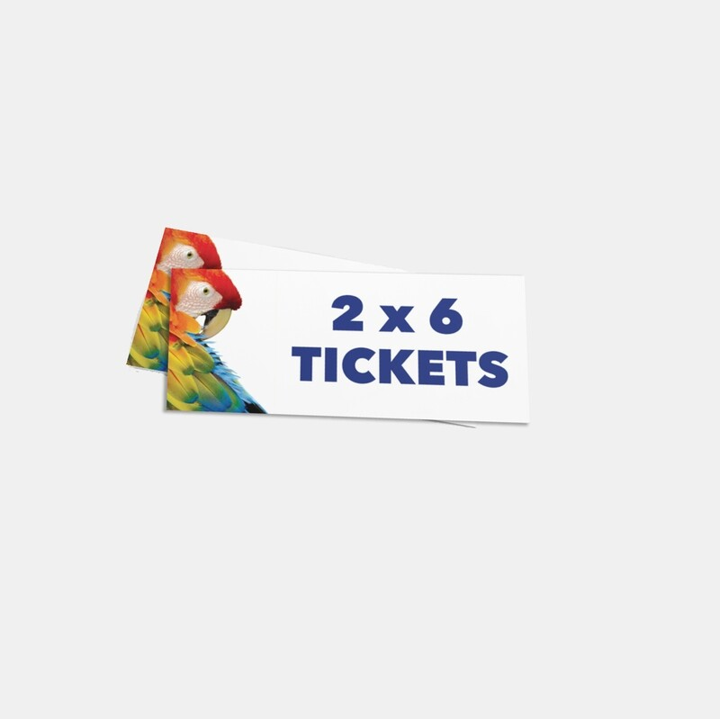 2x6 Full Color Concert Party or Stag Tickets - Single Sided