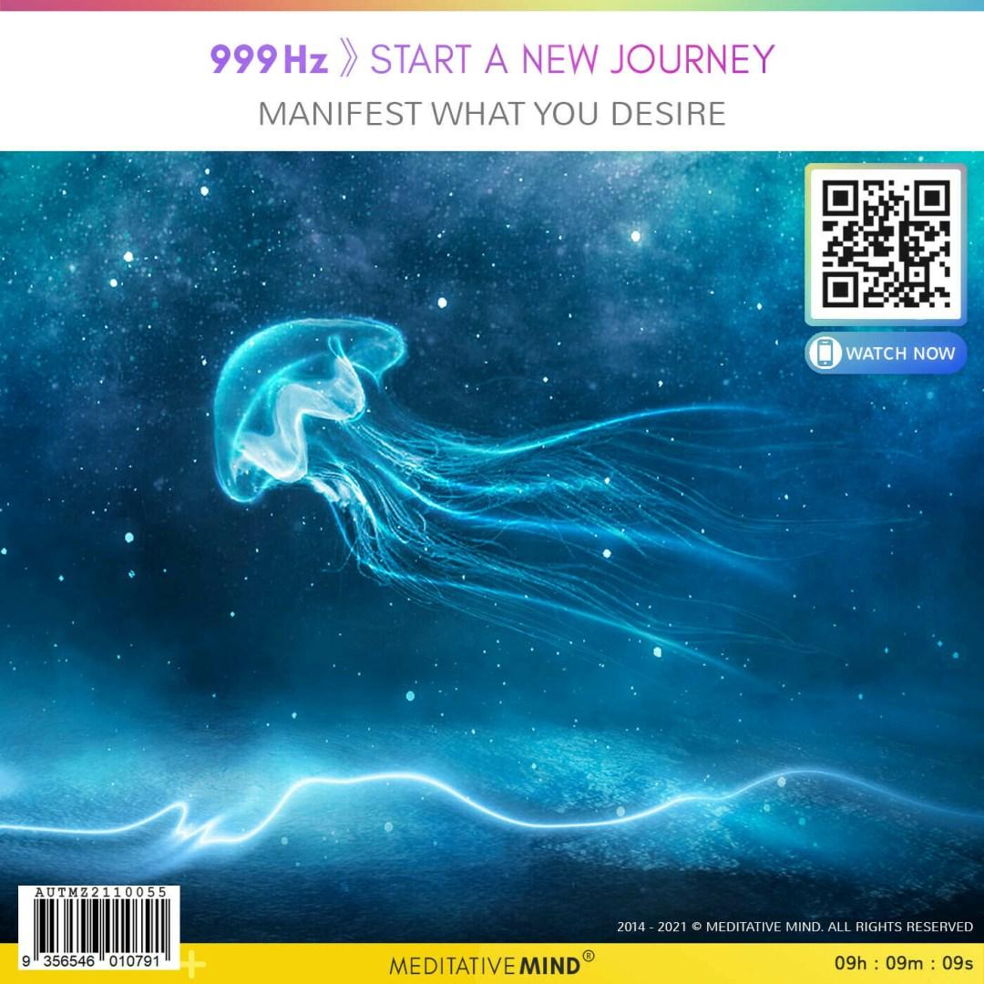 999Hz 》Start a New Journey - Manifest what you desire
