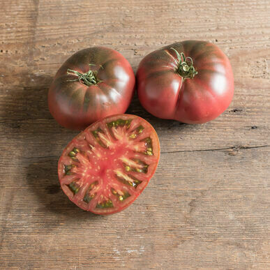 Black Krim Tomato Plant 4