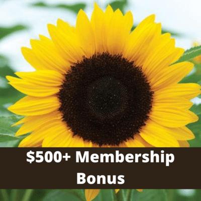 $500+ Level Member Bonus- 1 free pyo bouquet each week