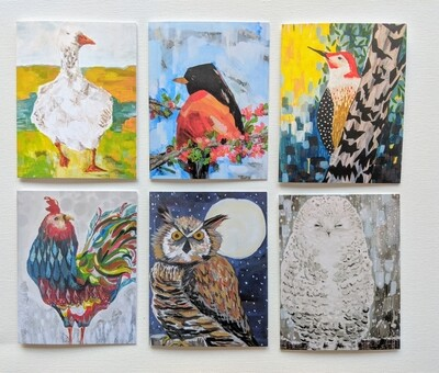 A Collection of Birds- mixed box of 6 cards